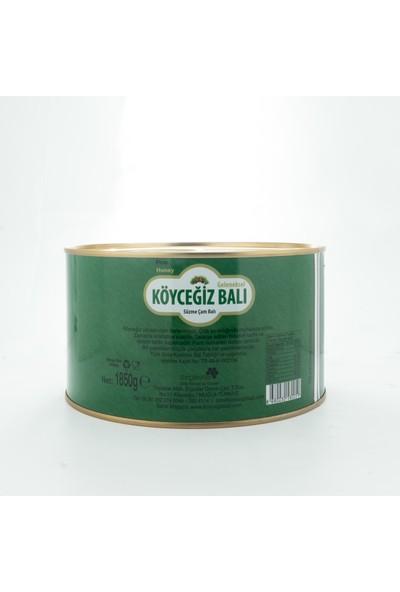 Köyceğiz Balı Çam Balı 1850 G Teneke