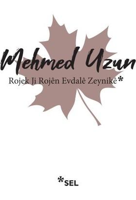 Rojek Ji Rojen Evdale Zeynike - Mehmed Uzun