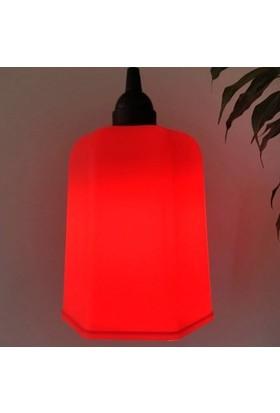 Marketcik Kırmızı Renk Park Bahçe Ağaç Feneri Işığı
