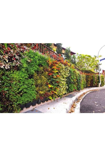 Ekoplas Dikey Bahçe Saksısı Kancalı Yeşil 10 Adet