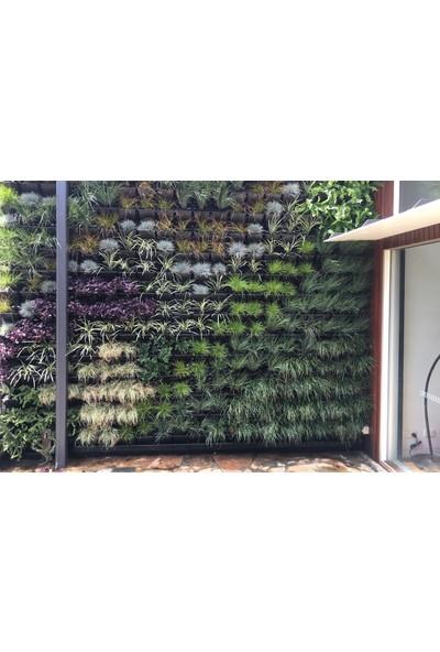 Ekoplas Dikey Bahçe Sistemi 110 x 90 cm Yeşil