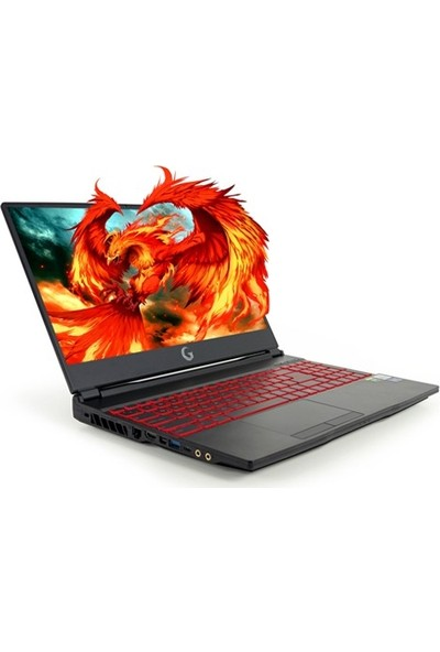 "Game Garaj Fenix 10TN-144 CW01 Intel Core i7 10750H 16GB 512GB SSD RTX 2070 Windows 10 Pro 15.6"" FHD Taşınabilir Bilgisayar"