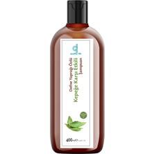 Ql Kepek ve Egzama Karşıtı Parabensiz Şampuan 400 ml