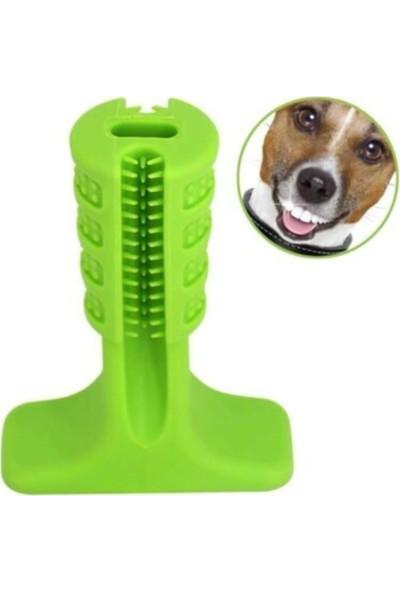 Welfare Köpek Diş Fırçası Büyük Boy