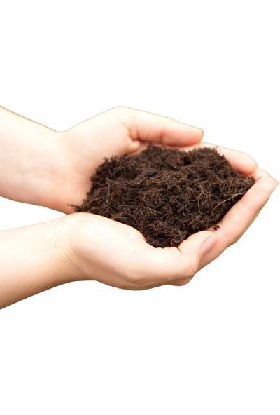 Agrobazaar Torf Toprağı Saksı Toprağı Çiçek Toprağı 80 Litre