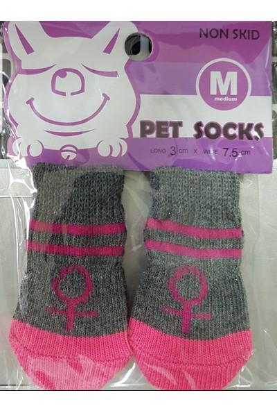 Little Friends Köpek Çorabı Medium Pembe - Gri Renk ve Desenli