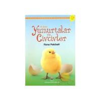 İlk Okuma: Yumurtalar ve Civcivler