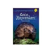 Erken Çocukluk Kitaplığı-İlk Okuma: Gece Hayvanları (7-8 Yaş) - Susan Meredith