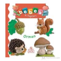 Bebek Kitapları - Orman-Kolektif
