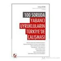 100 Soruda Yabancı Uyrukluların Türkiye'de Çalışması