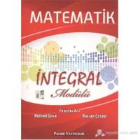 Palme Matematik İntegral Modülü-Mehmet Şahin