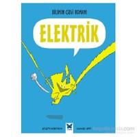 Bilimin Çizgi Romanı Elektrik