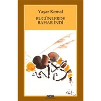 Bugünlerde Bahar İndi (Küçük Boy) - Yaşar Kemal