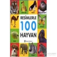 Resimlerle 100 Hayvan-Kolektif