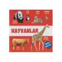 Hayvanlar (Türkçe-İngilizce)-Kolektif