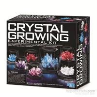4M Kristal Yetiştirme Deney Kiti