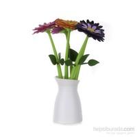 Vıgar Flower Saksılı Kalem Seti 5'Li