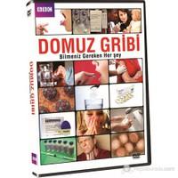 Swine Flu (Domuz Gribi) (DVD)