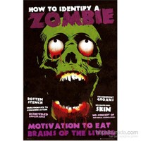 Identify A Zombie Maxi Poster