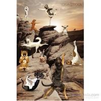 Yoga Dogs Canyon Maxi Poster