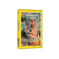 National Geographic: Tiger Of The Snow (Kar Kaplanı)