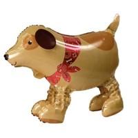 Parti Paketi Köpeğini Gezdir Folyo Balon