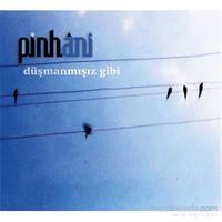 Pinhani - Düşmanmışız Gibi