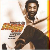 Shaggy - Boombastıc Hits