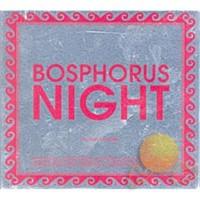 Bosphorus Night By Suat Ateşdağlı