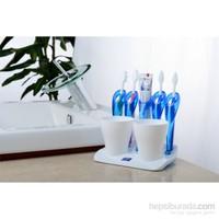 Titiz Trendy Dörtlü Diş Fırçalık