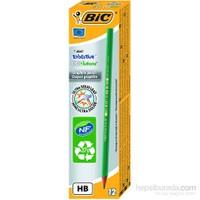 Bic Eco Evolution 650 Kurşun Kalem 12'li Kutu