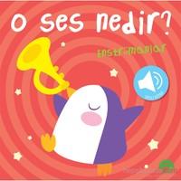 O Ses Nedir?: Enstrümanlar (Sesli Kitap)
