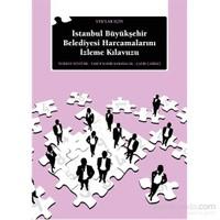 Stk'Lar İçin İstanbul Büyükşehir Belediyesi Harcamalarını İzleme Kılavuzu-Çağrı Çarıkçı