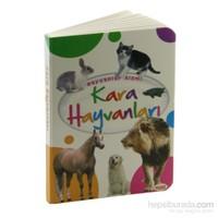 Hayvanlar Alemi 2: Kara Hayvanları-Kolektif