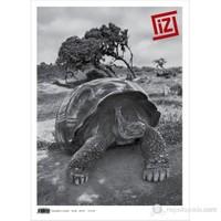İz Dergisi Sayı: 46