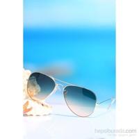 Aqua Di Polo 1987 Pld002 Kadın Uv400 Güneş Gözlüğü