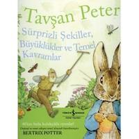 TAVŞAN PETER - SÜRPRİZLİ ŞEKİLLER, BÜYÜKLÜKLER VE TEMEL KAVRAMLAR