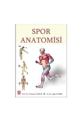 Spor Anatomisi - N. Şimşek Cankur