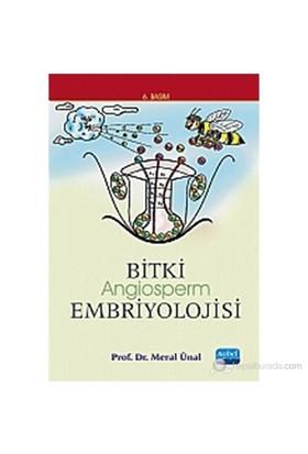 Bitki Embriyolojisi (Angiosperm)