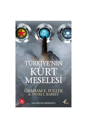 Türkiye'nin Kürt Meselesi - Henri J. Barkey
