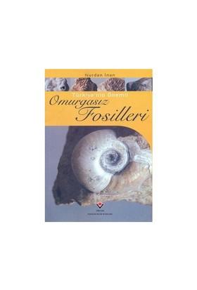 Türkiye'nin Önemli Omurgasız Fosilleri