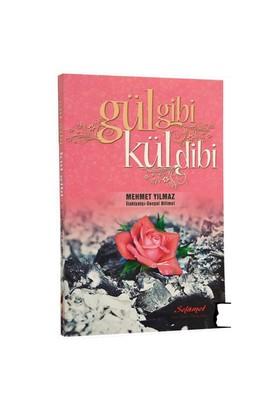 Gül Gibi Kül Dibi-Mehmet Yılmaz