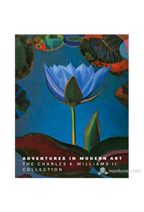 Adventures İn Modern Art: The Charles K. Williams Iı Collection