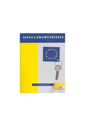 Avrupa Birliği Rehberi-İrfan Kaya Ülger