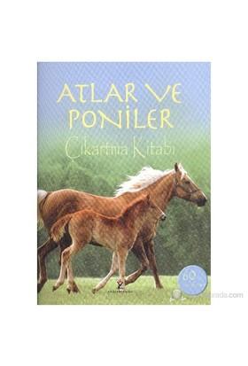 Atlar ve Poniler Çıkartma Kitabı - Joanna Spector