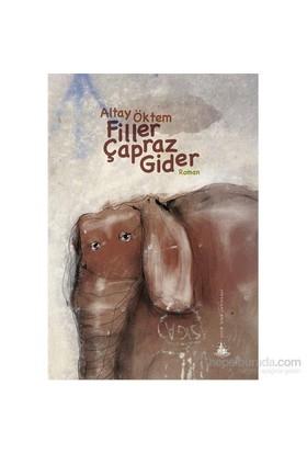 Filler Çapraz Gider-Altay Öktem