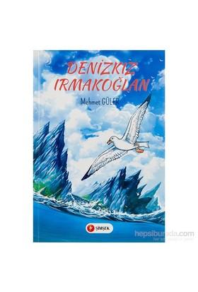 Simsek Deniz Kiz Irmak Oglan Egitici Kitap
