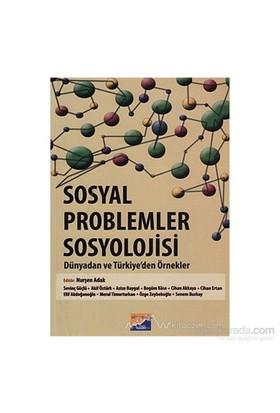 Sosyal Problemler Sosyolojisi - Elif Akdoğanoğlu