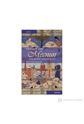 Mecnun - (Ortaçağ İslam Toplumunda Deli)