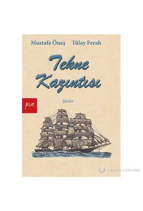 Tekne Kazıntısı - (Şiirler)-Tülay Ferah